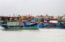 Thanh Hóa đến Bình Thuận chủ động ứng phó với áp thấp nhiệt đới