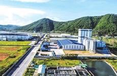 Điều chỉnh cục bộ quy hoạch chung Khu kinh tế Đông Nam Nghệ An