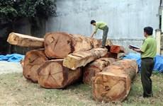 Gia Lai: Cách hết chức vụ trong Đảng của chủ tịch xã để mất rừng
