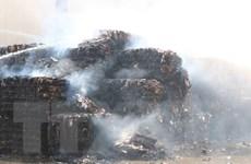 Bắc Ninh: Hỏa hoạn thiêu rụi xưởng phế liệu tại huyện Yên Phong