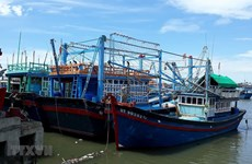 Ngư dân không trả được nợ vay đóng tàu cá, nợ xấu có xu hướng gia tăng