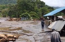Kenya: 37 người thiệt mạng do sạt lở đất sau trận mưa lớn