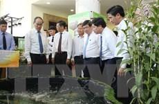 Xây dựng nông thôn mới: Tăng hiệu quả kinh tế, thu nhập cho nông dân