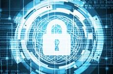 Bỉ được chọn để đặt Trung tâm kết nối an ninh mạng châu Âu