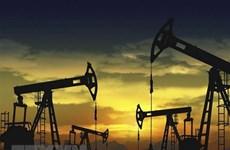 Giá dầu biến động trái chiều, thị trường Mỹ đóng cửa nghỉ Lễ Tạ ơn