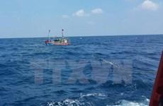 Quảng Ngãi: Tìm kiếm thông tin về tàu đã cứu nạn 4 ngư dân trên biển