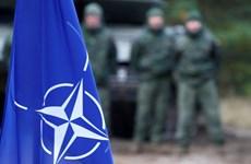 NATO đang trong tình trạng 'chết não' - sự thật bị thổi phồng?