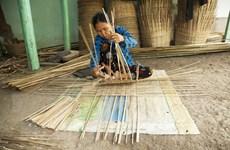 [Photo] Sức sống tại Làng nghề đan cần xé ở Kiên Giang