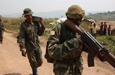 Tấn công ở Cộng hòa Dân chủ Congo, ít nhất 12 người thiệt mạng
