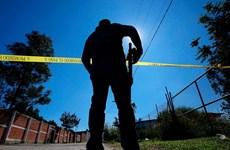Cảnh sát Mexico phát hiện 50 thi thể tại một trang trại