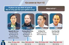 [Infographics] Ngày mai, xét xử sơ thẩm vụ Mobifone mua AVG