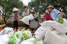 Hỗ trợ bổ sung gạo cho đồng bào dân tộc tham gia chăm sóc, bảo vệ rừng