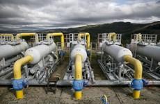 Ukraine ước tính thu về 15 tỷ USD nhờ trung chuyển khí đốt cho Nga
