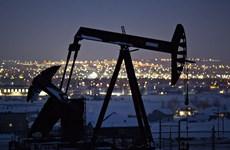 Giá dầu châu Á giao dịch gần mức cao nhất trong vòng ba tháng