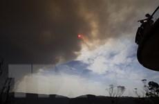 Australia: Nguy cơ cháy rừng lan rộng, hàng chục nghìn người sơ tán