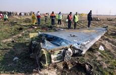 Vụ máy bay rơi: Nga khẳng định không có căn cứ để đổ lỗi cho Iran