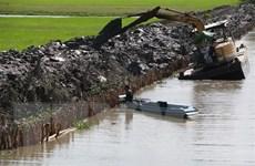 Từ nửa cuối tháng Ba, xâm nhập mặn ở ĐBSCL có xu thế giảm dần