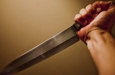 Trọng án tại Mê Linh: Nghịch tử giết chết mẹ, đâm bố nguy kịch