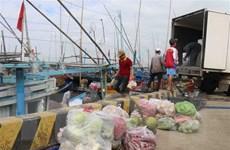 Ngư dân Phú Yên hối hả vươn khơi chuyến đi biển đầu năm mới