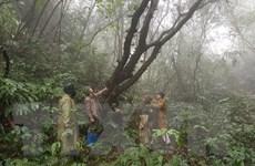 Giữ gìn nét đẹp hoang sơ của Vườn quốc gia Phia Oắc-Phia Đén