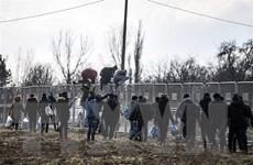 Đụng độ giữa cảnh sát và người di cư tại biên giới Thổ Nhĩ Kỳ-Hy Lạp