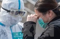 Trung Quốc: 80% số bệnh nhân đã xuất viện, chỉ có 8 ca nhiễm mới