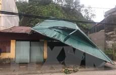 Yên Bái: Hơn 100 ngôi nhà bị tốc mái do mưa đá và dông lốc
