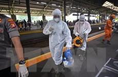 Indonesia cân nhắc sử dụng phương pháp xét nghiệm nhanh SARS-CoV-2
