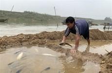 Xác định nguyên nhân cá nuôi lồng chết hàng loạt trên sông Cầu