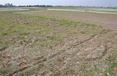 Chủ động kiểm kê đất đai, lập bản đồ hiện trạng sử dụng đất