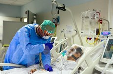 Italy và Mỹ xét nghiệm máu tìm người có kháng thể với SARS-CoV-2