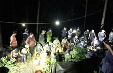 Triệt phá tụ điểm đánh bạc trong rừng thông, bắt giữ 41 đối tượng
