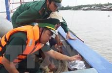 Cà Mau: Xử phạt 1,6 tỷ đồng đối với 4 chủ tàu cá vi phạm quy định