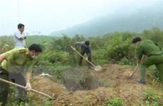 Thanh Hóa: Tiêu hủy 64kg động vật rừng quý hiếm bị tàng trữ trái phép