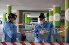 WHO cảnh báo về tốc độ lây nhiễm virus SARS-CoV-2 tại châu Phi