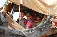 Việt Nam bày tỏ quan ngại về tình hình nhân đạo tại Yemen