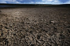 Miền Tây nước Mỹ trải qua thời kỳ khô hạn nhất trong hơn 1.000 năm