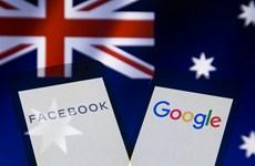 Australia có cứu được báo chí khi buộc Google, Facebook trả tiền?