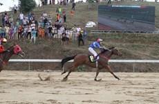 Lâm Đồng: Cho phép Trường đua ngựa Thiên Mã được kinh doanh đặt cược