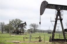 Giá dầu trên thị trường Mỹ 'rớt' hơn 27%, xuống dưới 12 USD mỗi thùng