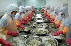 Gặp khó khăn, ngành tôm vẫn hướng đến kim ngạch xuất khẩu 3,5 tỷ USD