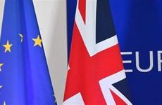 Đàm phán thương mại giữa Anh và Liên minh châu Âu: Ít hy vọng đột phá