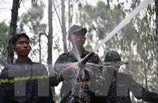 Kiên Giang: Vụ cháy rừng ở huyện Hòn Đất đã được khống chế hoàn toàn