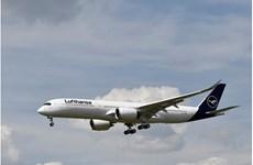 Hãng hàng không Lufthansa nối lại các chuyến bay từ giữa tháng Sáu