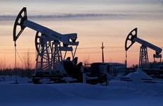 'Nước cờ sai lầm' của Nga trong cuộc chiến dầu mỏ
