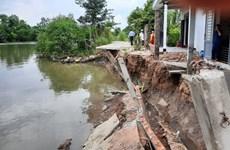 [Photo] Xuất hiện nhiều điểm sạt lở nguy hiểm ở tỉnh Hậu Giang