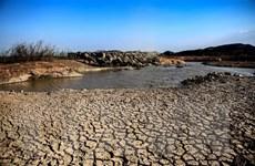 Hạn hán ở Trung Bộ có xu hướng lan rộng trong những ngày đầu tháng Sáu