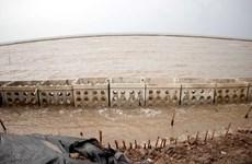 887 tỷ đồng nâng cấp đê biển Gò Công, bảo vệ hơn 37.000ha đất canh tác