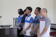 Thanh Hóa: Nguyên Phó giám đốc Sở và thuộc cấp lĩnh án tù
