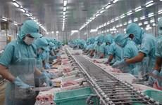 Cá tra 'chinh phục' thị trường miền Bắc, giảm áp lực xuất khẩu